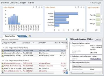 Sales workspace in Business Contact Manager without the ribbon and Navigation Pane.