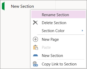 Rename section option in OneNote Online.