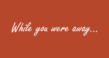 "Orange background with ""while you were away"" written in white script"