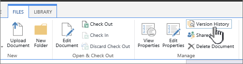 The file tab with Version History highlighted