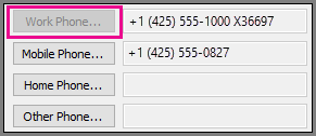 Work Phone Number is Greyed Out.