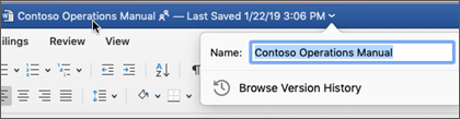 Clicking the document title allows you to rename the file or see version history