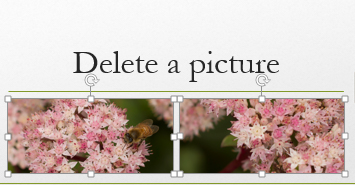 When press and hold the Control key, you can select more than one picture.