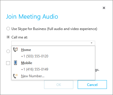 Choose the phone number for meeting audio