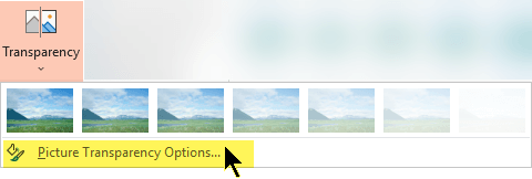 Picture Transparency Options let you choose a custom level of opacity for a picture