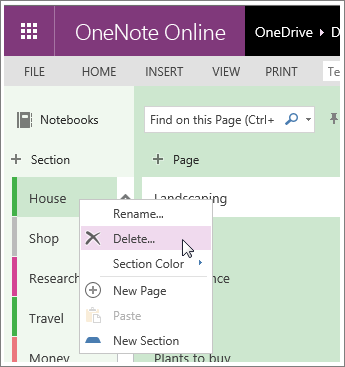Screenshot of how to delete a section in OneNote Online.