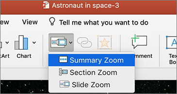 Zoom drop-down list with Summary Zoom selected