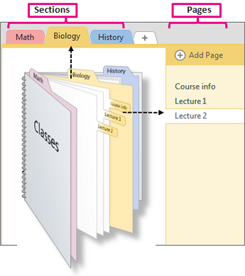 onenote section template - add sections and pages onenote