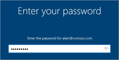 Enter your password screen