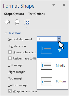 Format Shape panel with Vertical Alignment selected