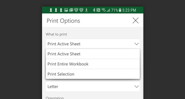 Print dialog box with list of available print options