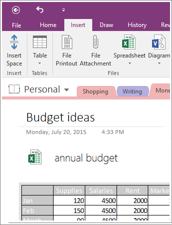 Screenshot of an embedded spreadsheet in OneNote 2016.