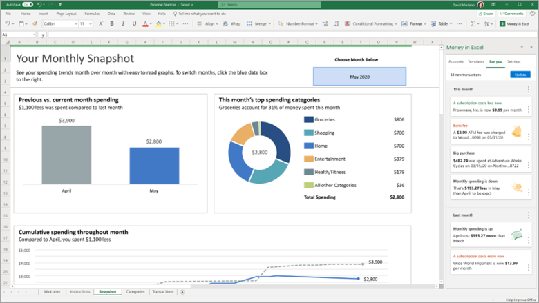 Image of the Snapshot sheet in Money in Excel