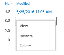 Version history options (view, restore, delete)