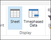 Timephased Data view