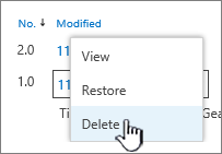 Version dropdown menu with Delete highlighted