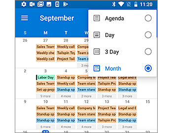 Calendar showing a monthly view