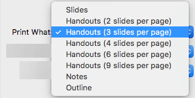In the Print What box, select a Handout option