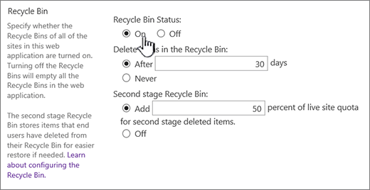 recycle settings section of web application general settings page