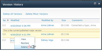 Version History dialog box with Delete selected for a file version