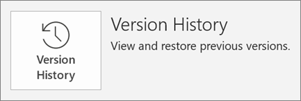 The Version History button inside the the File Tab.