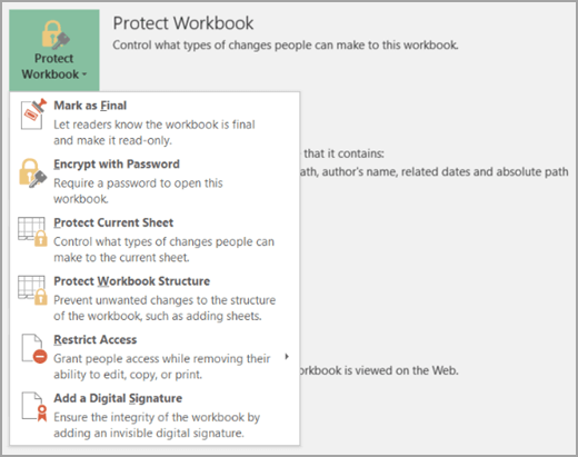 password protect workbook with read only option