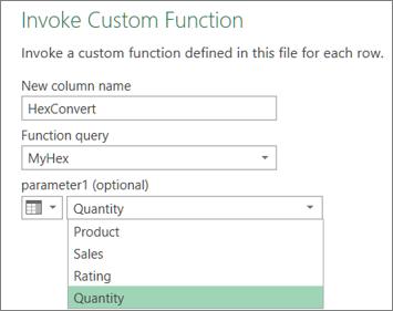 The Invoke Custom Function dialog box
