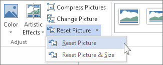 Reset Picture command