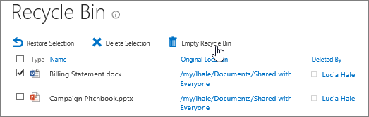 Empty the recycle bin of all items