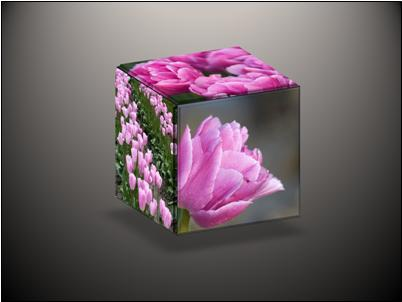 3-D cube with three pictures