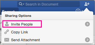 Invite other people to view or edit your document by clicking Invite People.