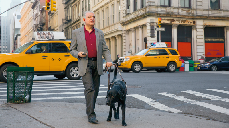 Photo of a man and his service dog. Links to Office 365 Accessibility page.