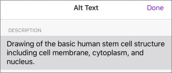 Alt text dialog box for images in OneNote for iOS.