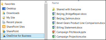 A synced library in File Explorer