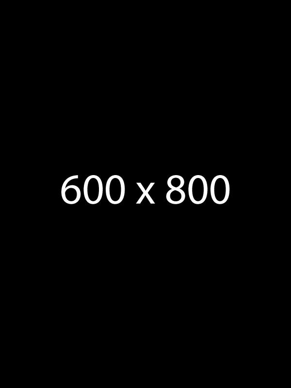 600 x 800 image