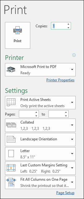 Print Preview Dialog