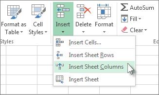 Click Insert, and then click Insert Sheet Columns