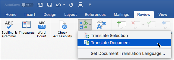 Review tab with Translate Document highlighted