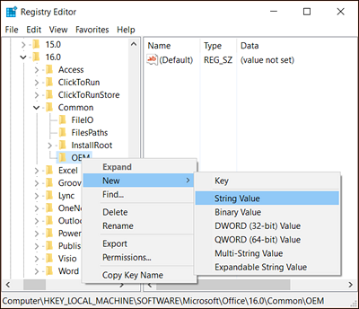 Right-click the new OEM key and select New > String Value