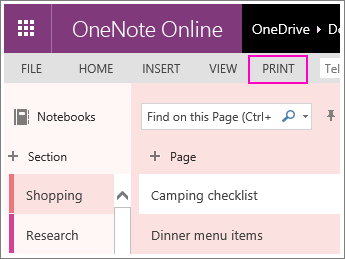 Screenshot of the print button in OneNote Online.