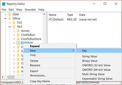Right-click Common > New > Key