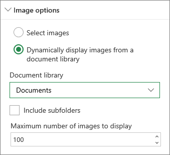 Image Gallery options