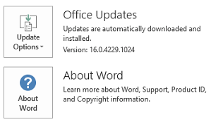 When Office has been installed by using Click-to-Run technology, the Application and Update information looks like this.