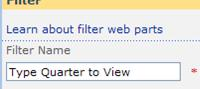 Enter Typer Quarter to View in the Filter Name box in the tool pane.