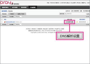 """Click """"DNS解析设置"""""""