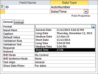 The Format property of a Date/Time field