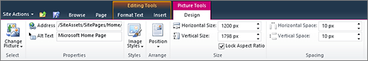 The picture tools tab lets you set size, style, position, and alt text on images.