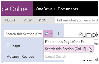 Screenshot of how to search a section in OneNote Online.