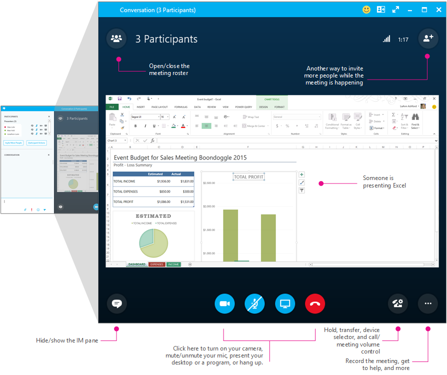 Skype for Business meetings window, meeting pane, diagrammed