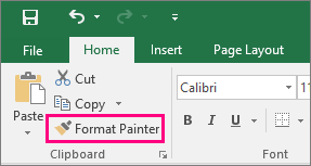 Shows the Format Painter button in Excel
